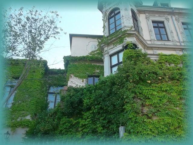 Villa Kleinzschachwitzer Ufer während einer Radtour entdeckt