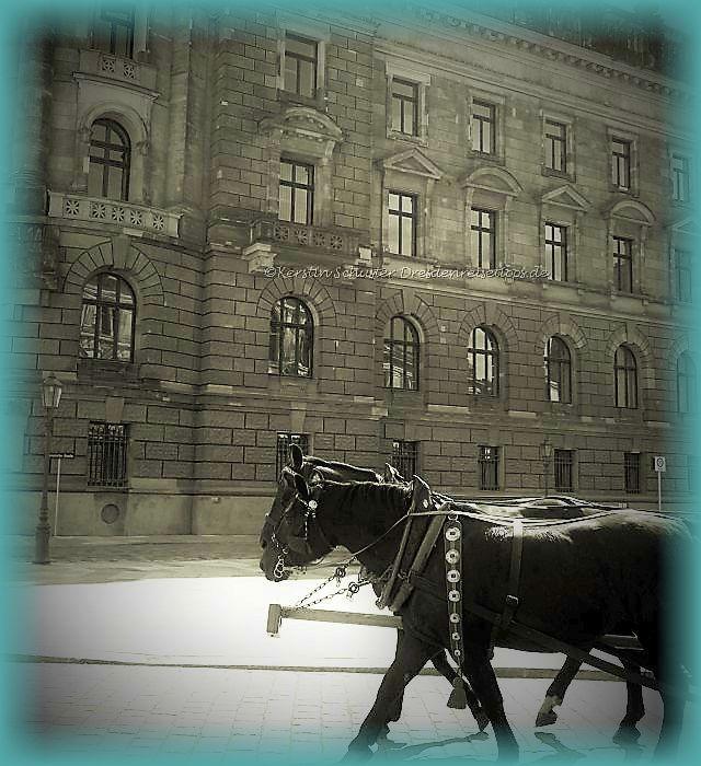 Gruseln in Dresden
