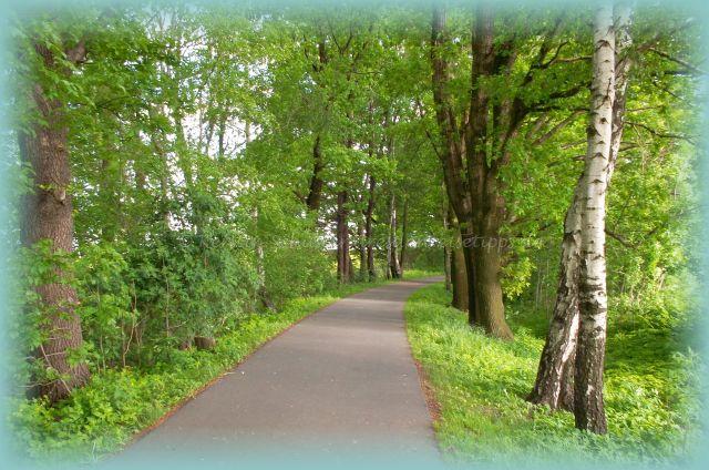 Wandern im Schönfelder Hochland