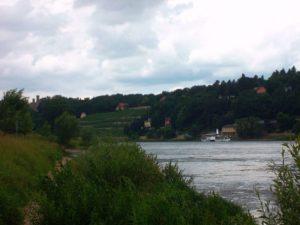 Elbe baden in Dresden