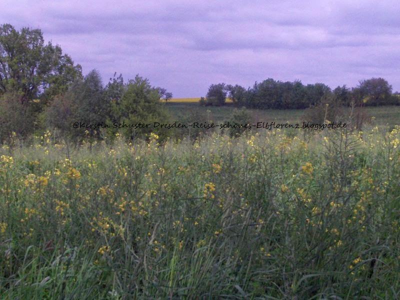 Gemarkung Reitzendorf