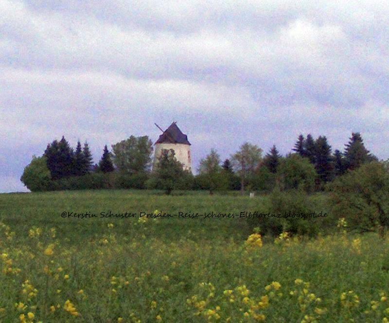 Windmühle Schönfelder Hochland