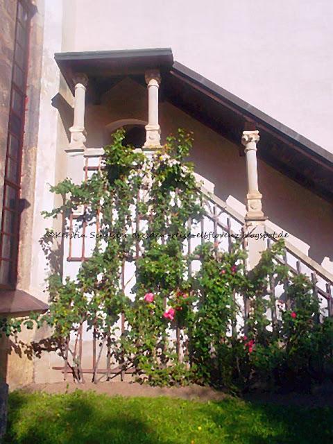 Spätgothische Kirche Sachsen Dohna