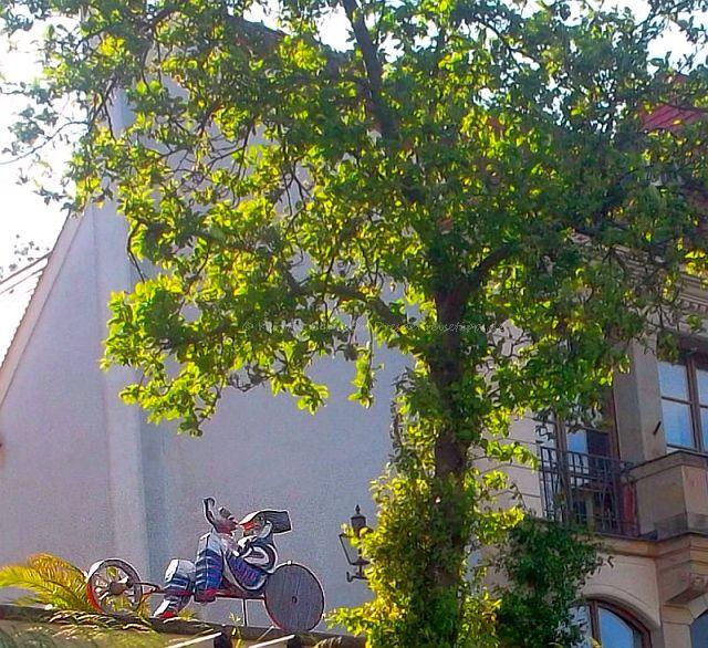 Dresden Reisetipps Kunst am Laubegaster Ufer