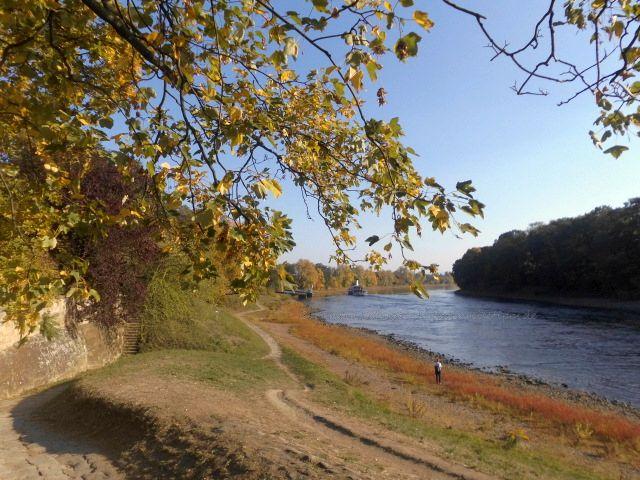 Dampferfahrt zum Barockschloss und Schlosspark Pillnitz