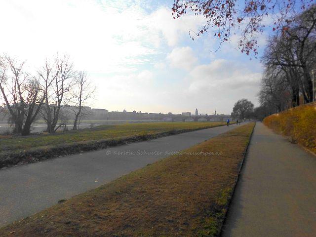 Landschaftsschutzgebiet Neustädter Ufer Dresden