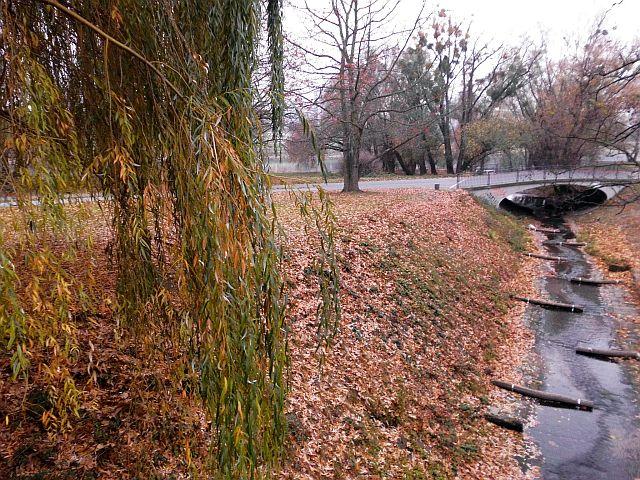 idyllisches Naturschutzgebiet Dresdner Neustadt