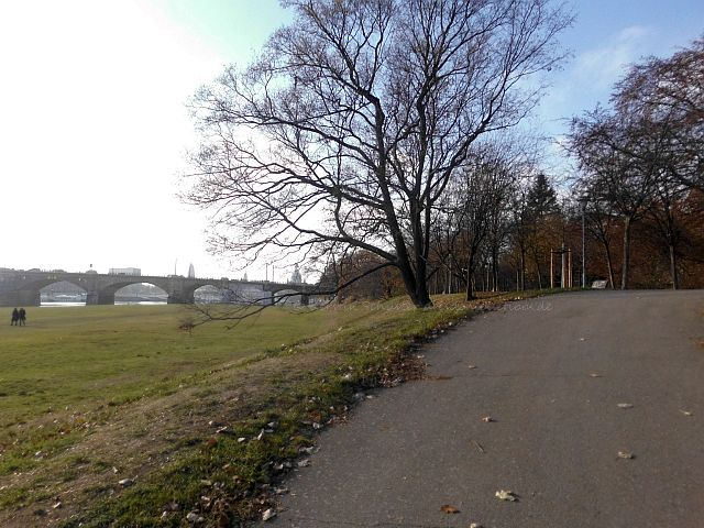 Neustädter Ufer Blick zur Dresdner Altstadt