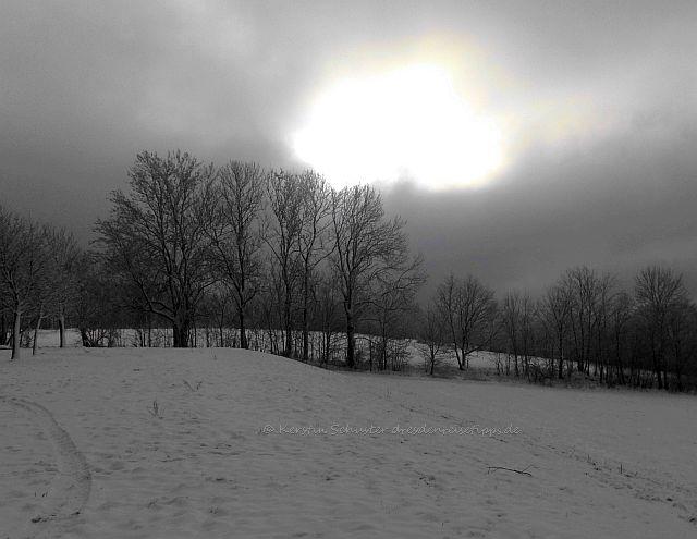 Dresden Reisetipps für den Winter