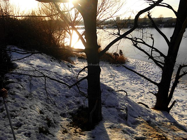Dresden Reisetipps Laubegast im Winter