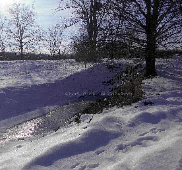 Landschaftsschutzgebiet Laubegast im Winter