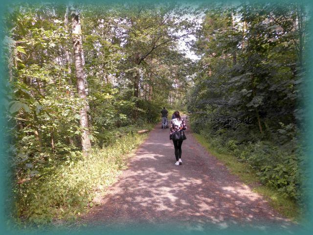 Waldwege nicht verlassen