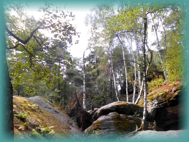magisches Labyrinth Elbsandsteingebirge