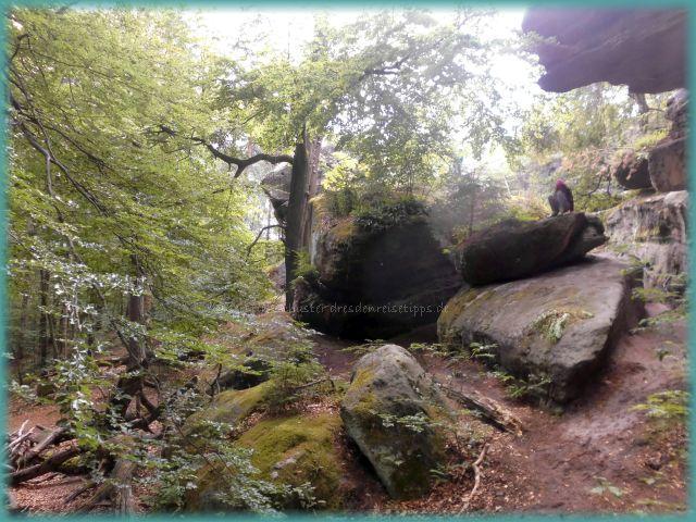 Sandsteinfelsen Labyrinth Sächsische Schweiz-Osterzgebirge