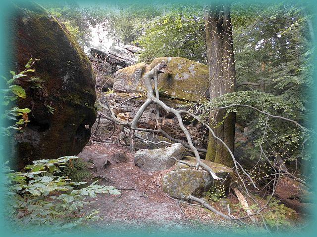 sagenhaftes Labyrinth Elbsandsteingebirge