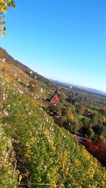 Herbstfeeling in Pillnitz