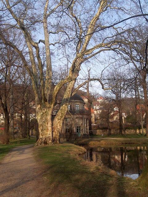 Veranstaltungstipps Schloss Pillnitz