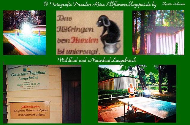 Waldbad Langebrück Naturbad Dresdner Heide