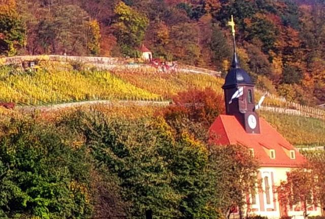 Indian Summer fernab vom Schloss Pillnitz