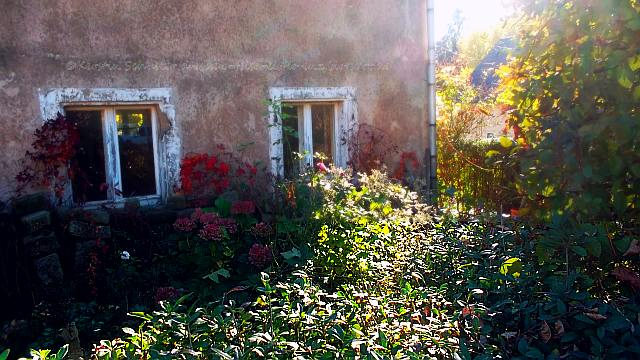 Herbststimmung in Pillnitz