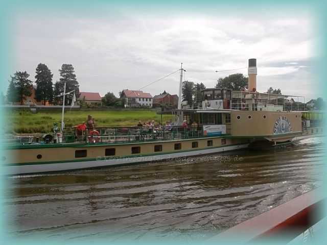 Weiße Flotte Verein kämpft um historische Raddampferflotte Dresden