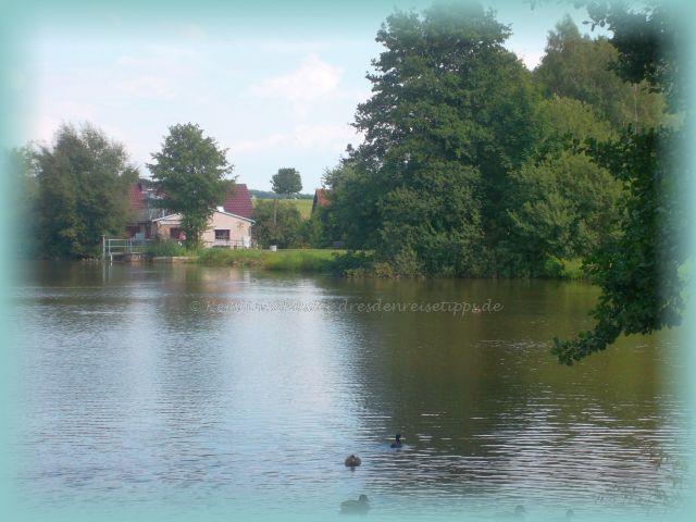 Rammenau am Teich
