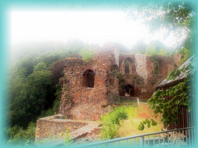 Burg und Schloss Tharandt