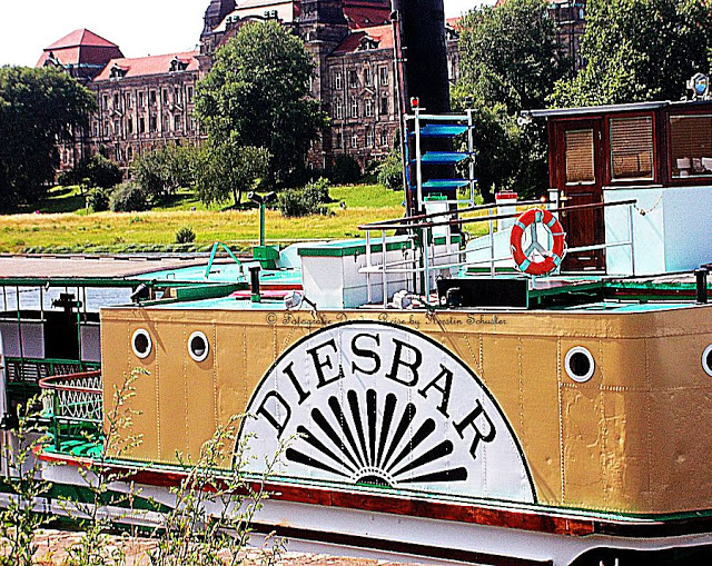 Dampferparade Dresden Diesbar
