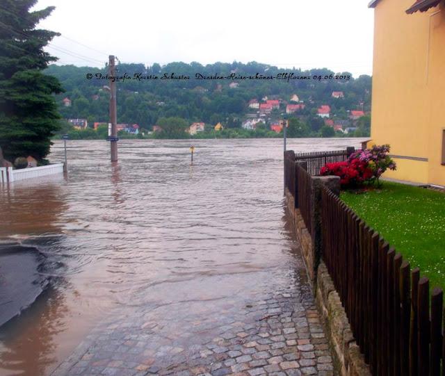 Elbepegel steigt Alarmstufe 4 in Dresden Laubegast