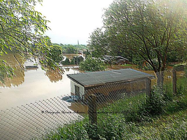 Gärten in Laubegast unter Wasser