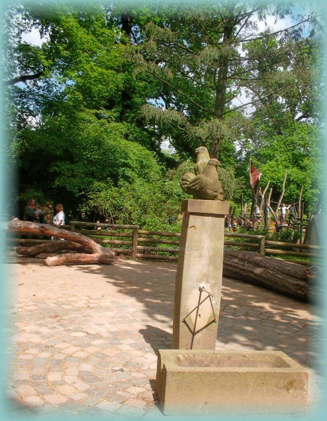 Spielplätze und Freizeitangebote Dresden im Zoo