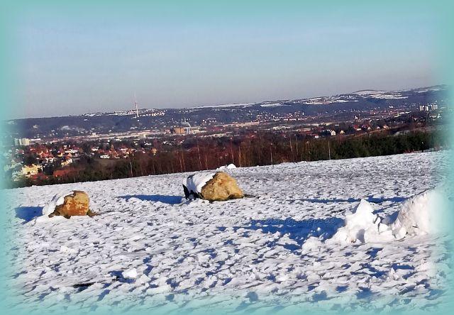 Panoramablick Kaitzer Höhe Dresden