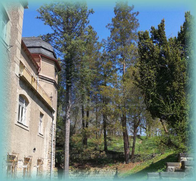 Schloss Thürmsdorf Ausflugsziel Struppen